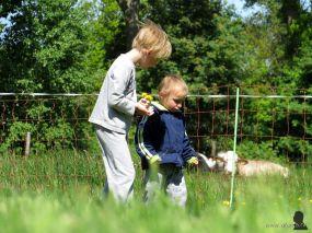 Samen bloemen plukken voor mama en beppe