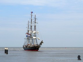tallship race harlingen 019