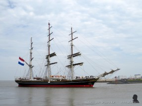 tallship race harlingen 028