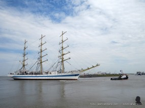 tallship race harlingen 035