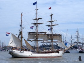 tallship race harlingen 049