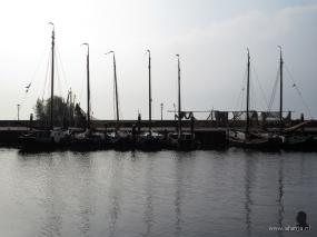 in de Urker haven (2)