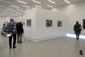 Gerrit Benner in Museum Belvédère - 14