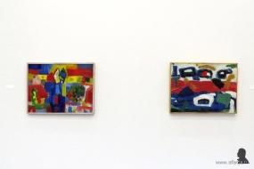 Gerrit Benner in Museum Belvédère - 13