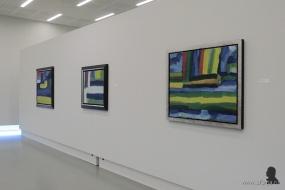 Gerrit Benner in Museum Belvédère - 7