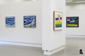 Gerrit Benner in Museum Belvédère - 4