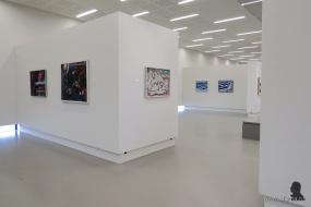 Gerrit Benner in Museum Belvédère - 3