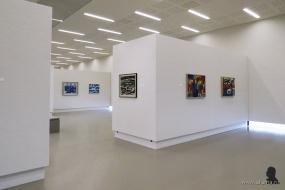 Gerrit Benner in Museum Belvédère - 2