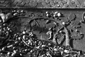 oude begraafplaats in zwartwit - 8