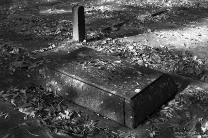oude begraafplaats in zwartwit - 11