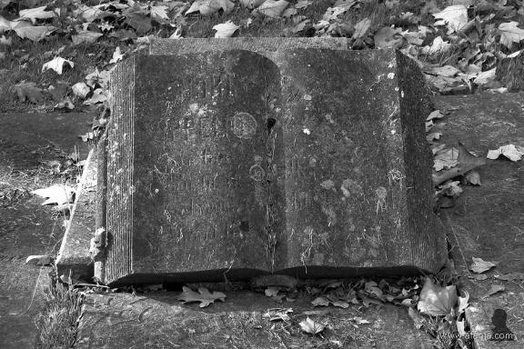 oude begraafplaats in zwartwit - 12