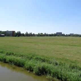 3 augustus - dorre weilanden (1)