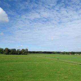 21 augustus - frisgroene weilanden (2)