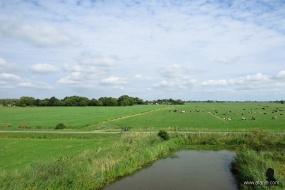 21 augustus - frisgroene weilanden (3)