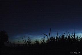 lichtende nachtwolken juni 2005 (2)
