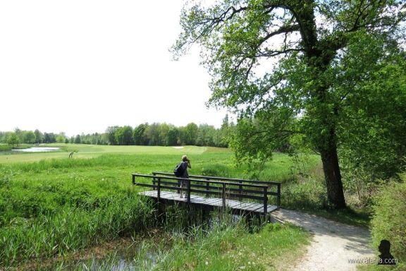 vijversburg (5)