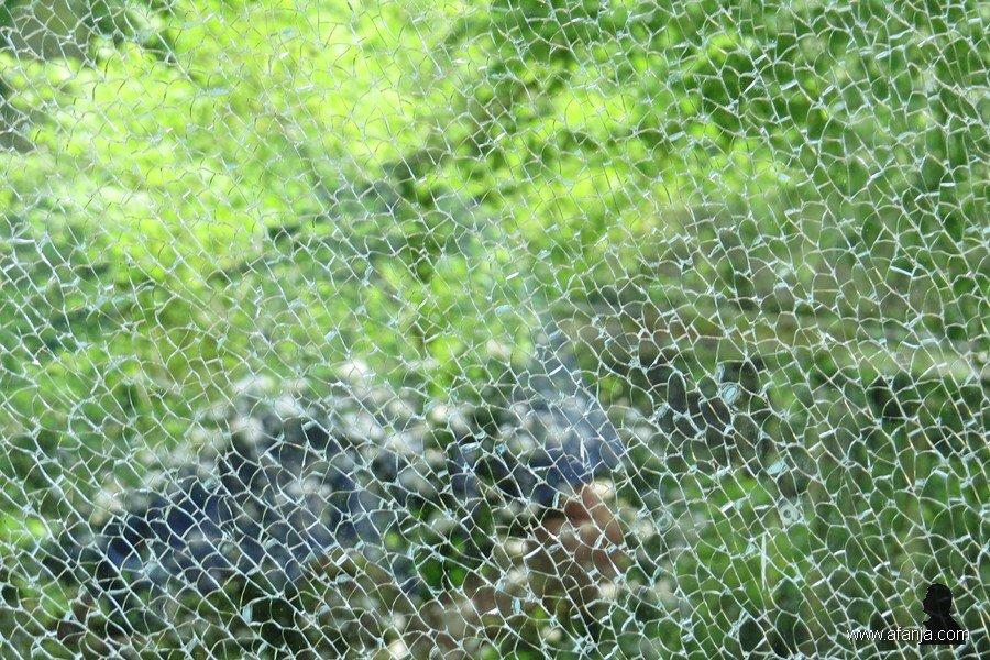 gebroken glas (0)