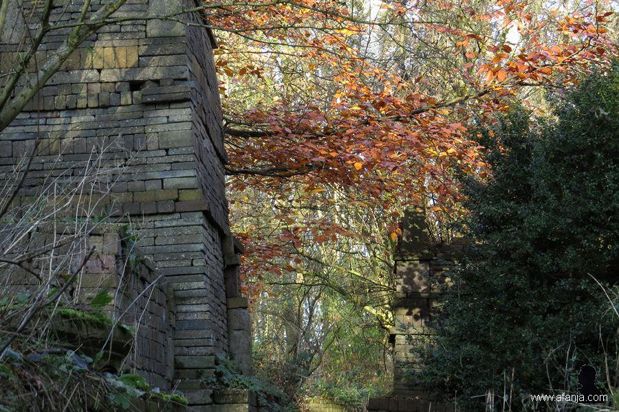 ecokathedrale herfst 2