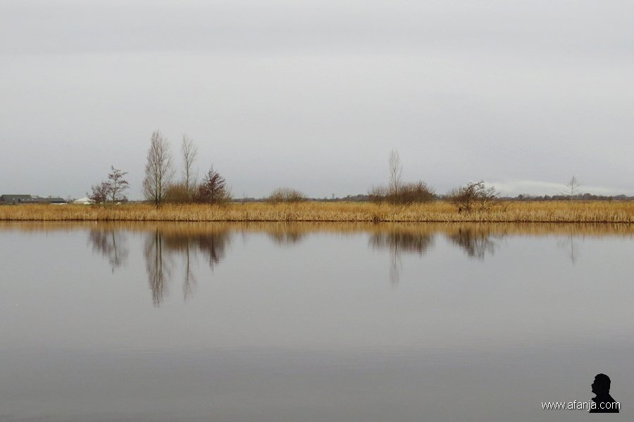 grijze weerspiegelingen - 1
