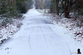 sneeuwwandeling 8