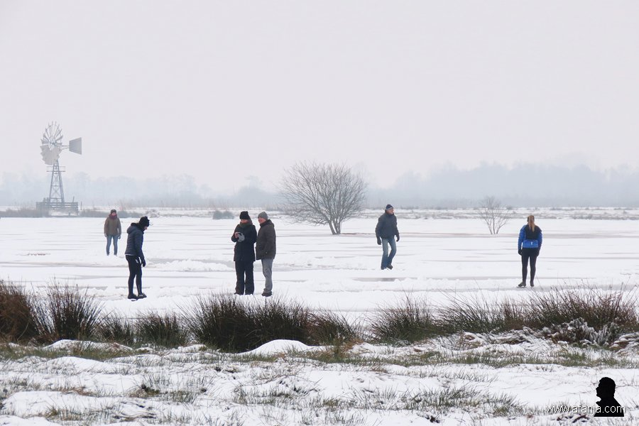 schaatsers in de Jan Durkspolder 5