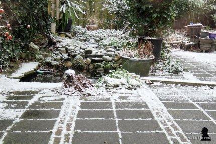 1 februari - lichte sneeuw