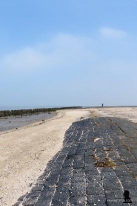 buitendijks gebied de Peazemerlannen (1)