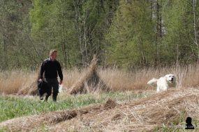 5. rietsnijder en hond
