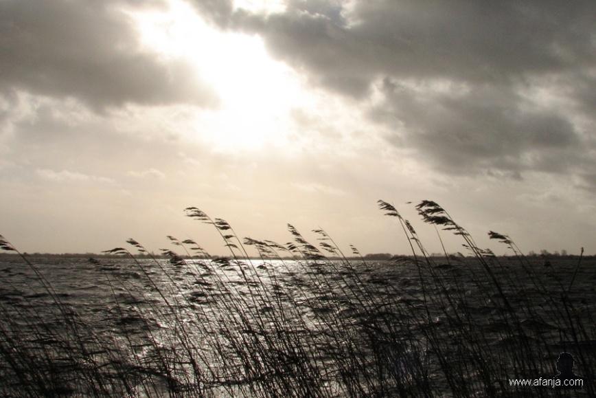 Stormy Monday - 1