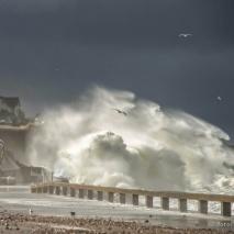 stoarm - storm - tempête